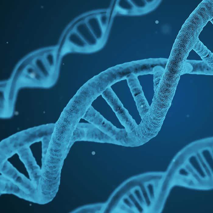 Neue Gen-Therapien mit guten Heilungschancen